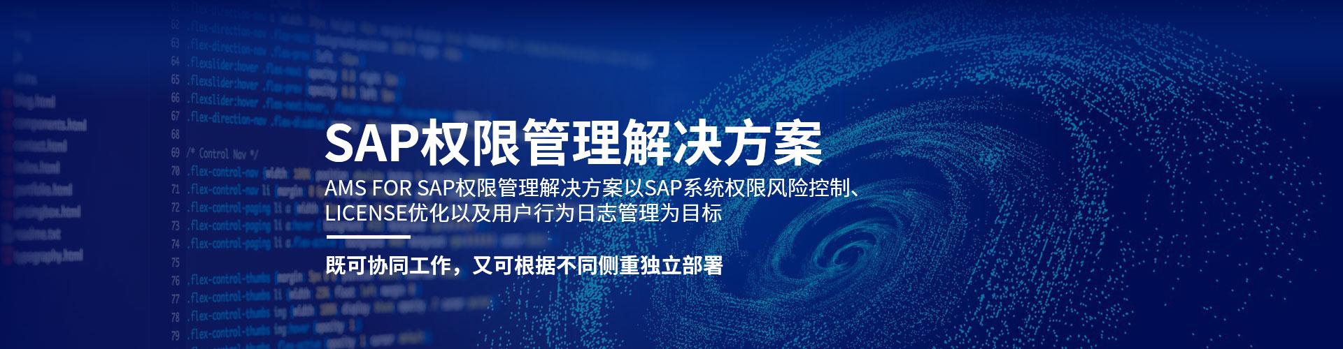 SAP权限审计解决方案
