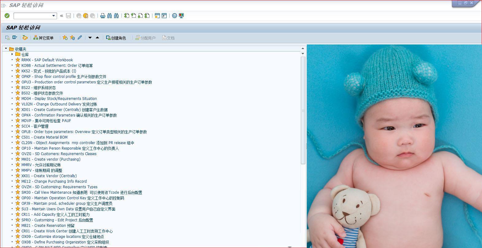 SAP修改登录桌面背景图片 图1