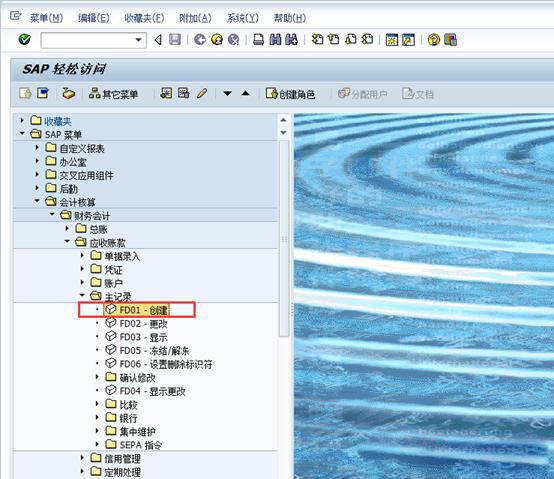 SAP中新建客户 图2