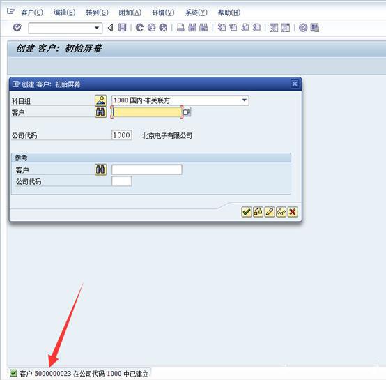 SAP中新建客户 图10