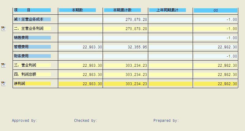 SAP License:RP-报表利器Report Painter应用教程 图6