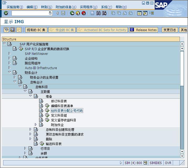 SAP License:SAP的国家会计科目表