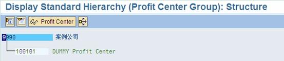 SAP License:CO十日谈-利润中心会计 图8