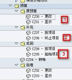 SAP License:PS-七日通-第二通-预算管理 图5