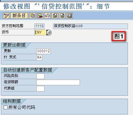 SAP License:SD-信用控制 图2