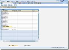 SAP自学指南:案例公司的SAP实现(六) 图11