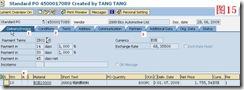 SAP License:简谈SAP软件与国产软件的几点区别 图22