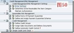 SAP License:对销售模块的几点认识 图39