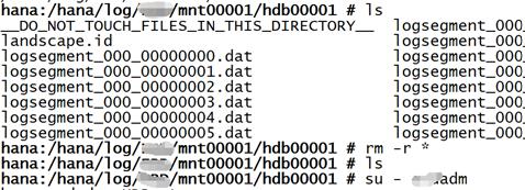 SAP License:HANA在线日志被误删了怎么办? 图7